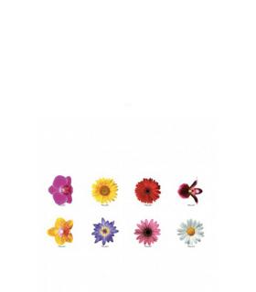 """Identifiers mod Brille. """"Flowers"""""""