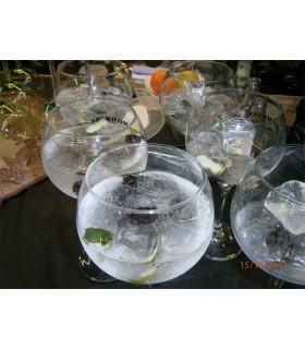 Taller de Gin & Tonics maridados