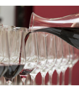 Introductory course tasting and Protocol