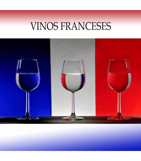 Cata Vinos Franceses